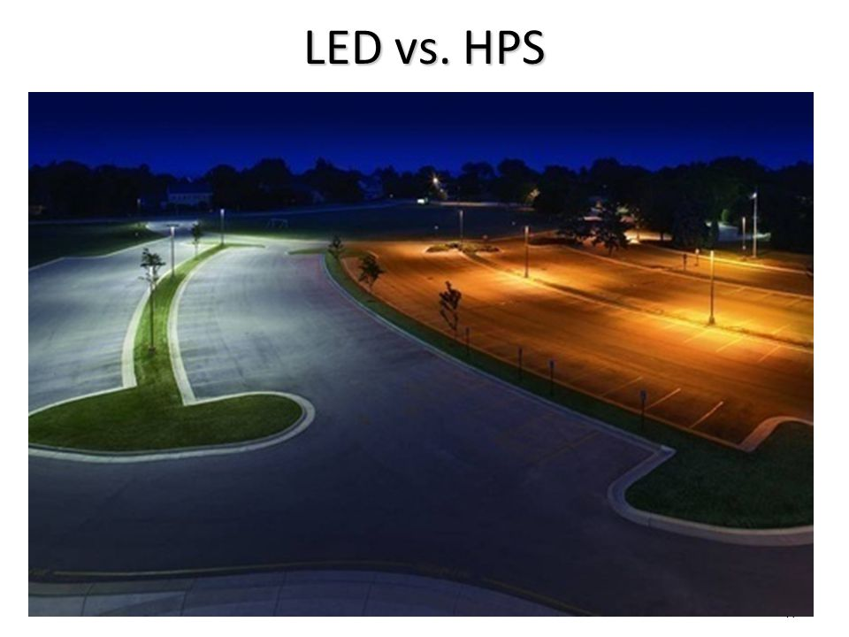 LED vs. HPS NOTE THE SUPERIOR COLOR RENDITION OF THE LED 47