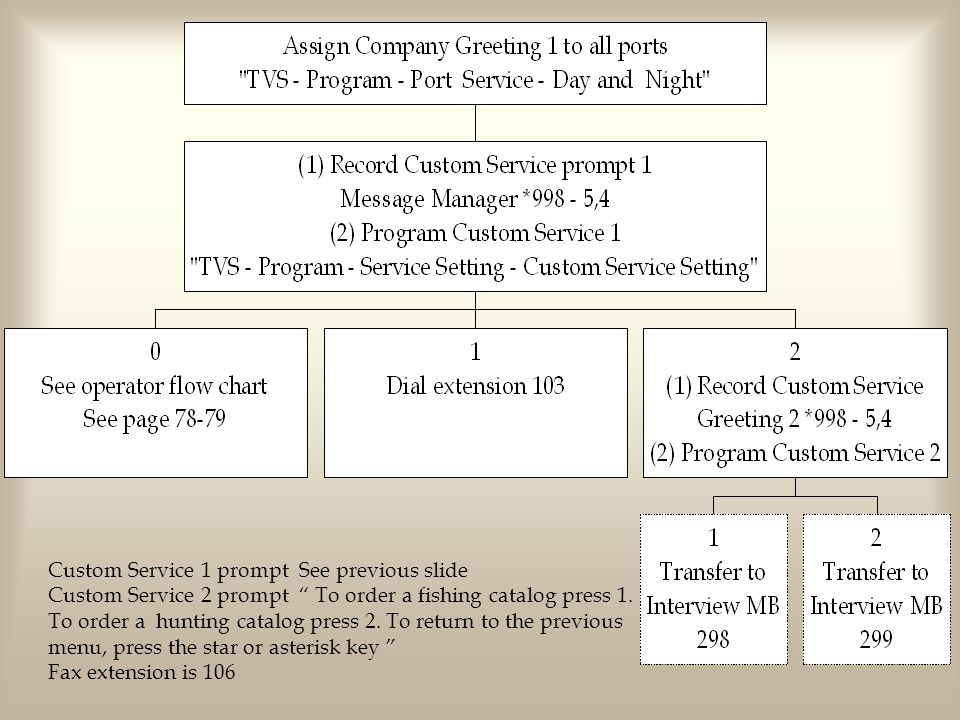 Custom Service 1 prompt See previous slide