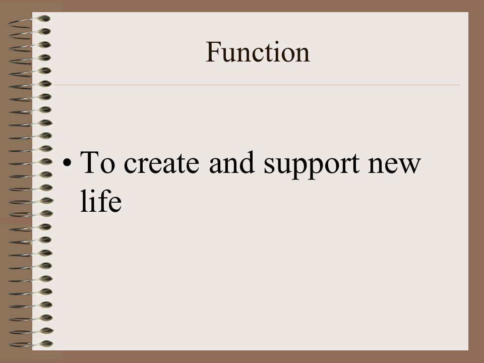 To create and support new life