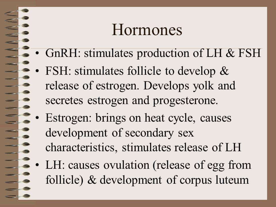 Hormones GnRH: stimulates production of LH & FSH