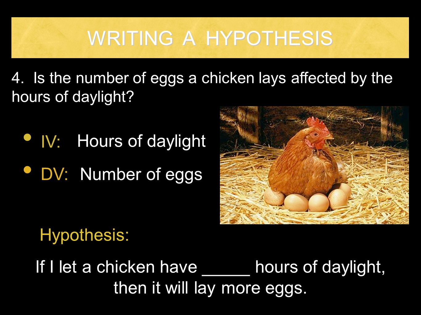 WRITING A HYPOTHESIS IV: Hours of daylight DV: Number of eggs