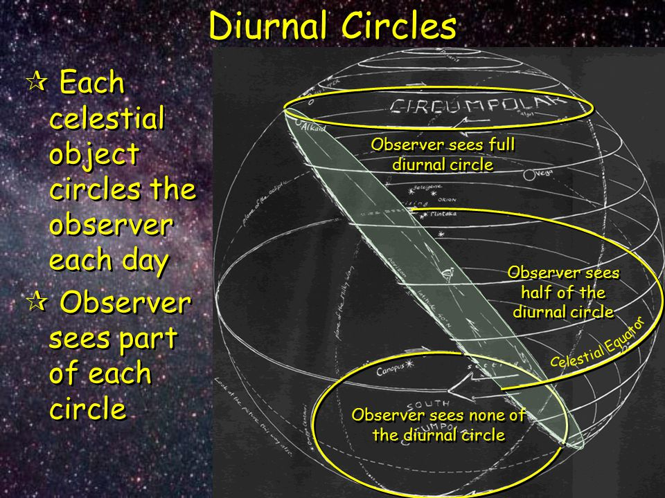 Diurnal Circles Each celestial object circles the observer each day