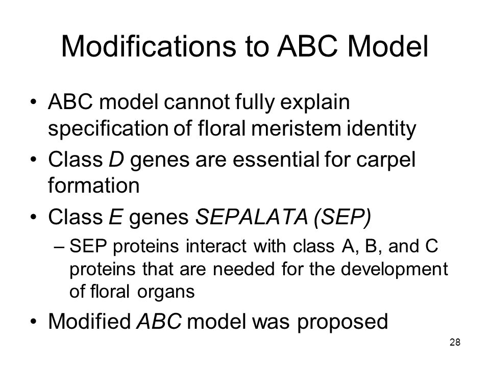 Modifications to ABC Model