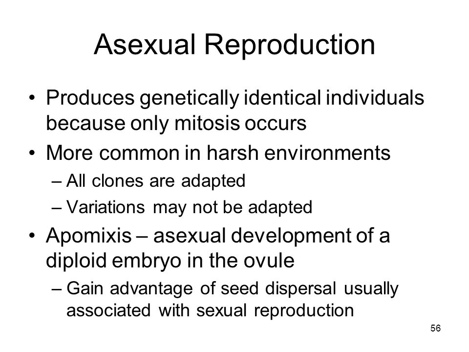 Asexual Reproduction Produces genetically identical individuals because only mitosis occurs. More common in harsh environments.