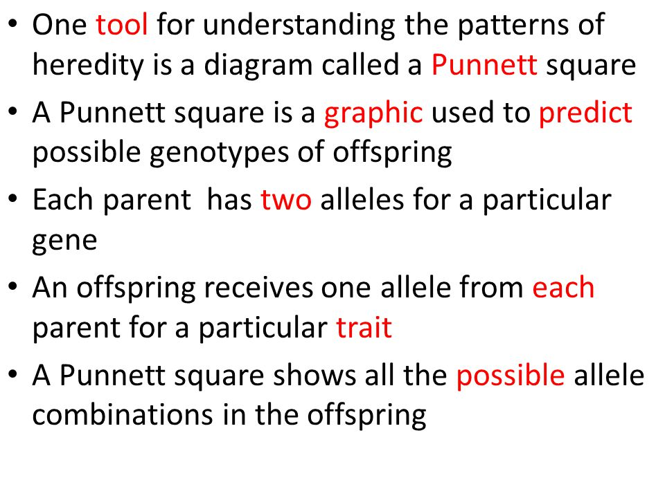 One tool for understanding the patterns of heredity is a diagram called a Punnett square