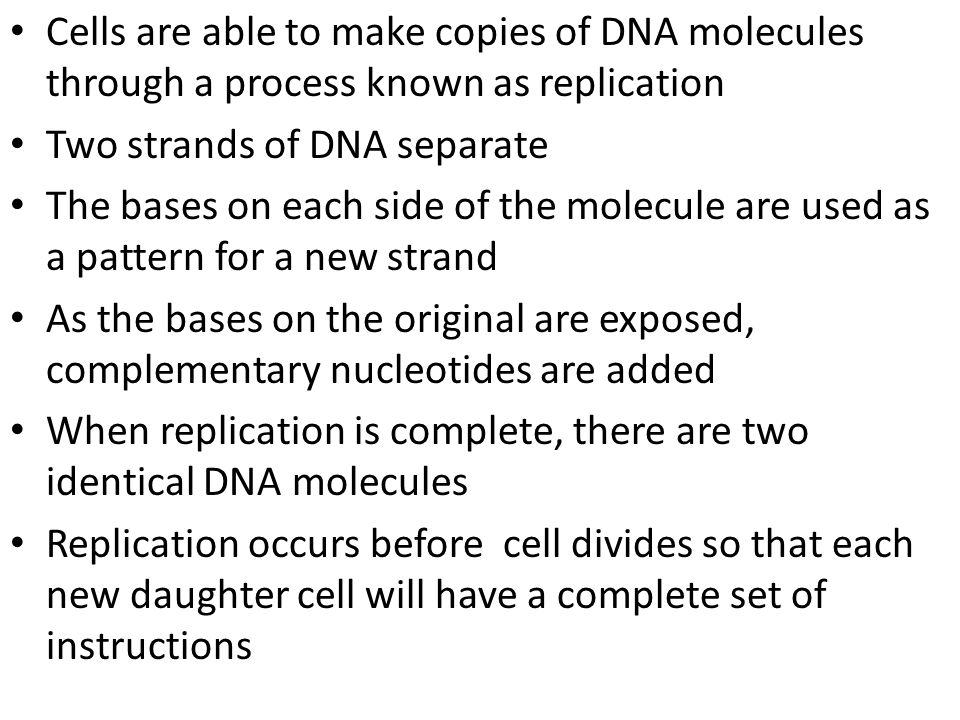 Cells are able to make copies of DNA molecules through a process known as replication