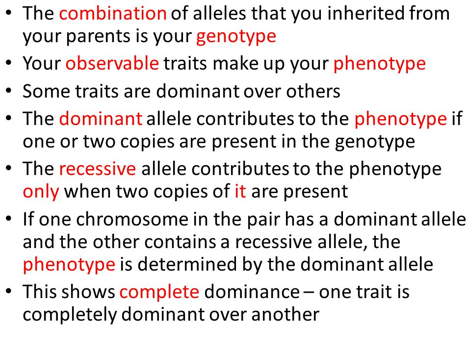 The combination of alleles that you inherited from your parents is your genotype