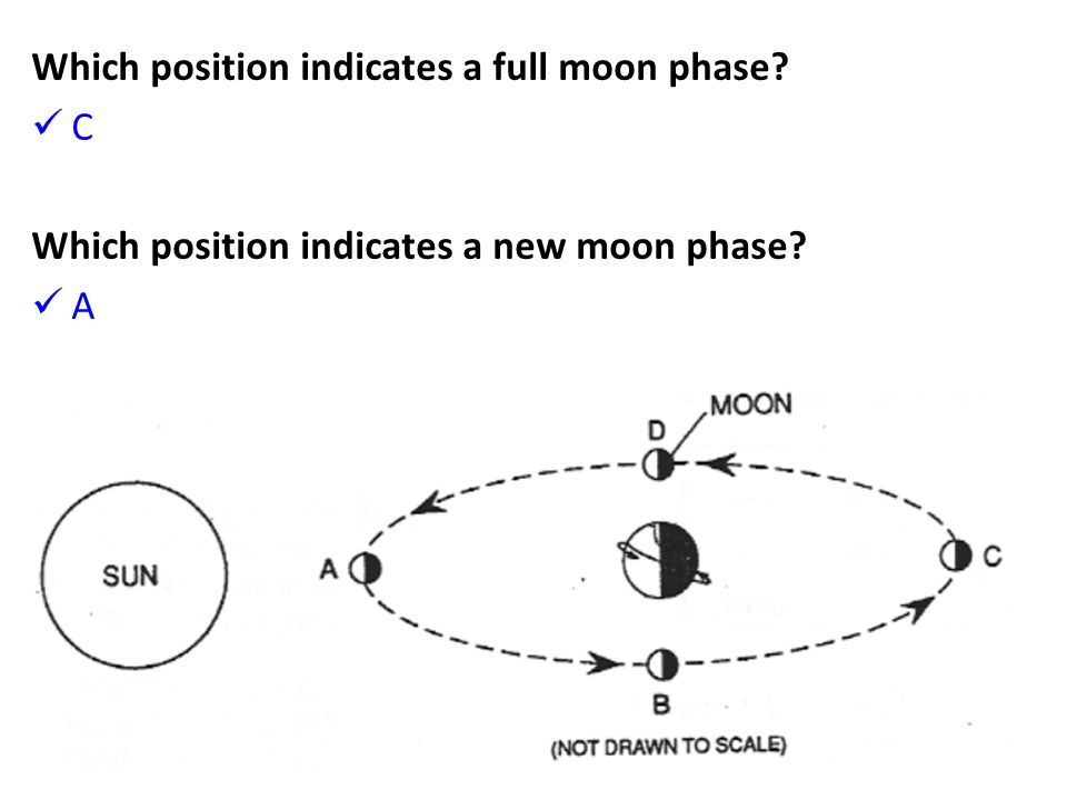 Which position indicates a full moon phase