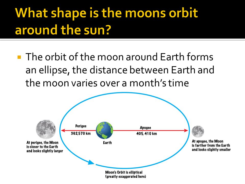 What shape is the moons orbit around the sun