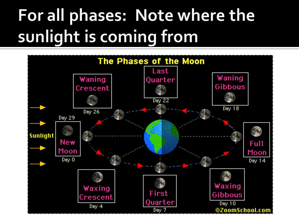 For all phases: Note where the sunlight is coming from