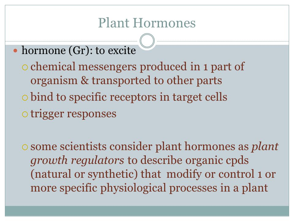 Plant Hormones hormone (Gr): to excite. chemical messengers produced in 1 part of organism & transported to other parts.