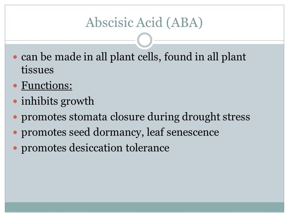 Abscisic Acid (ABA) can be made in all plant cells, found in all plant tissues. Functions: inhibits growth.