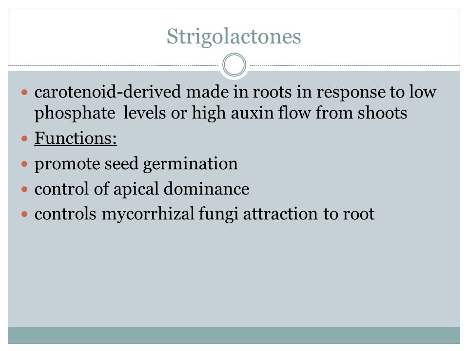 Strigolactones carotenoid-derived made in roots in response to low phosphate levels or high auxin flow from shoots.