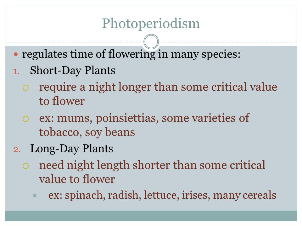 Photoperiodism regulates time of flowering in many species: Short-Day Plants. require a night longer than some critical value to flower.