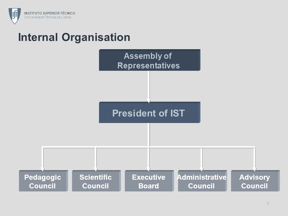 Internal Organisation