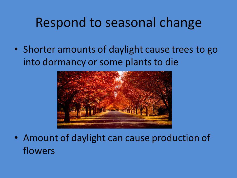 Respond to seasonal change