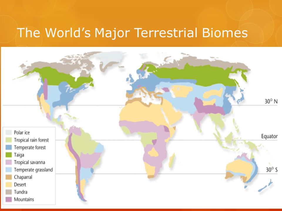 The World's Major Terrestrial Biomes