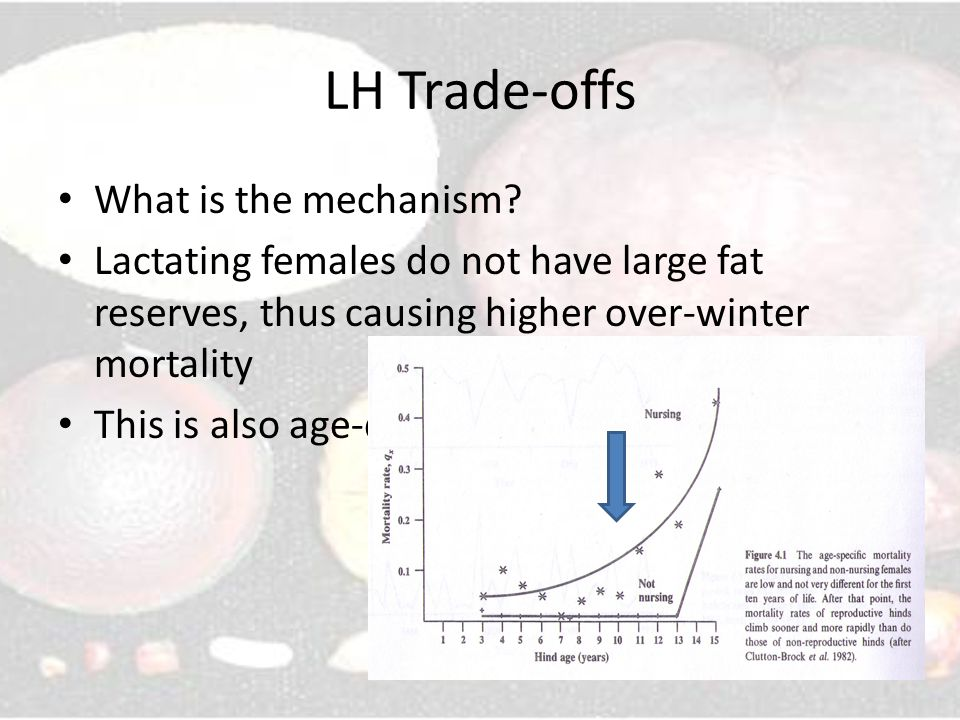 LH Trade-offs What is the mechanism