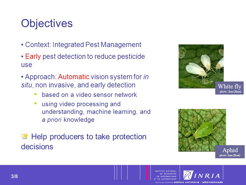 Objectives Help producers to take protection decisions