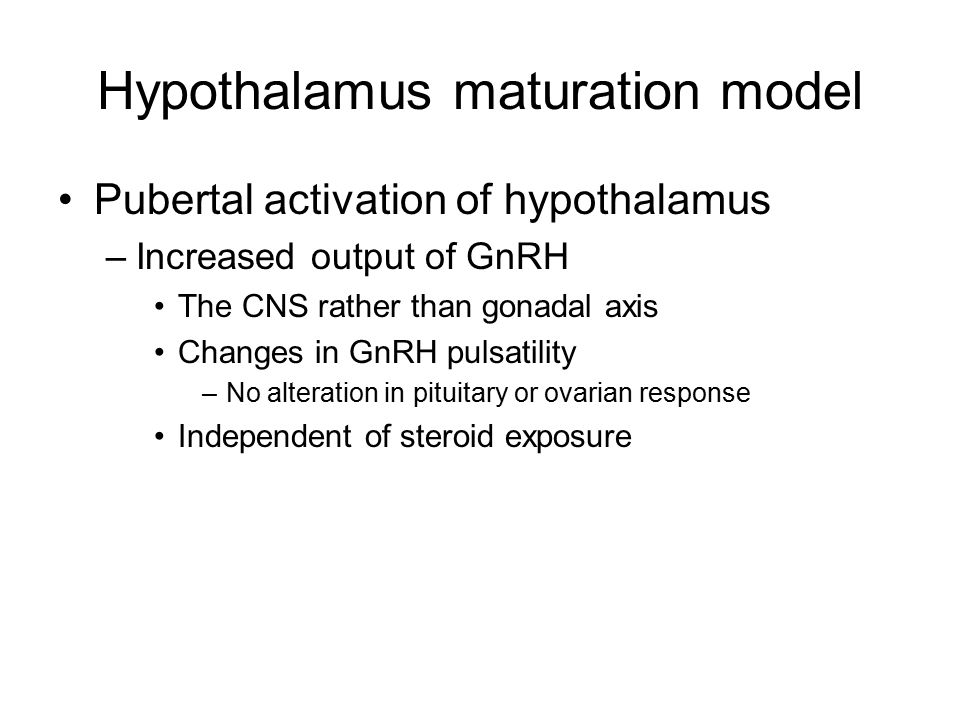Hypothalamus maturation model