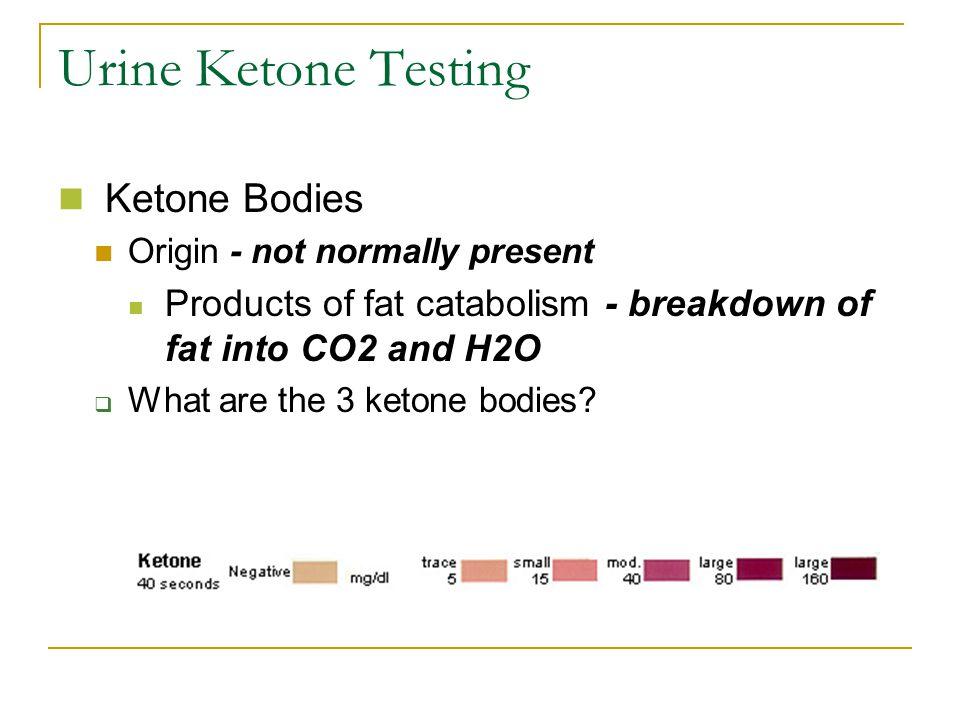 Urine Ketone Testing Ketone Bodies