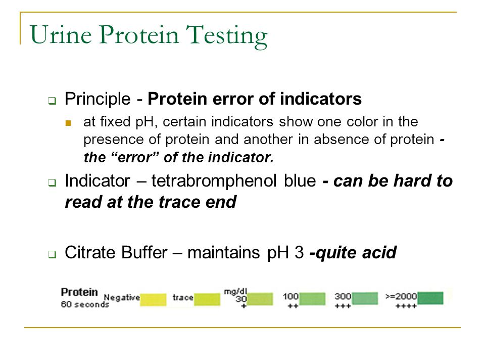 Urine Protein Testing Principle - Protein error of indicators