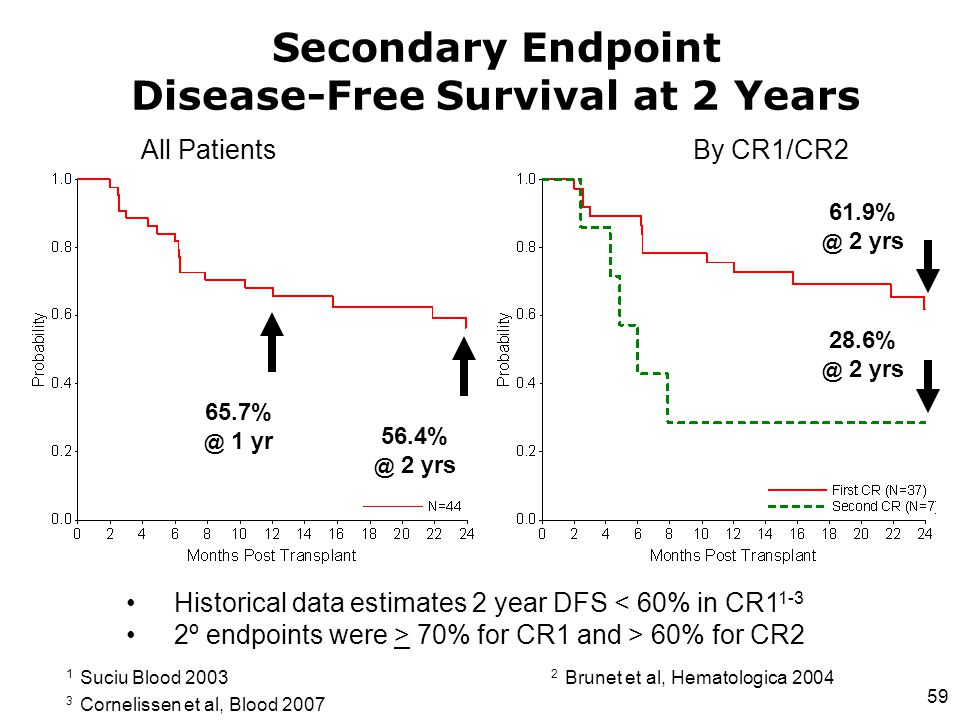 Secondary Endpoint Disease-Free Survival at 2 Years