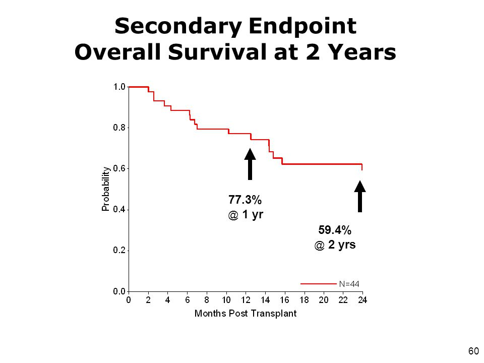Secondary Endpoint Overall Survival at 2 Years