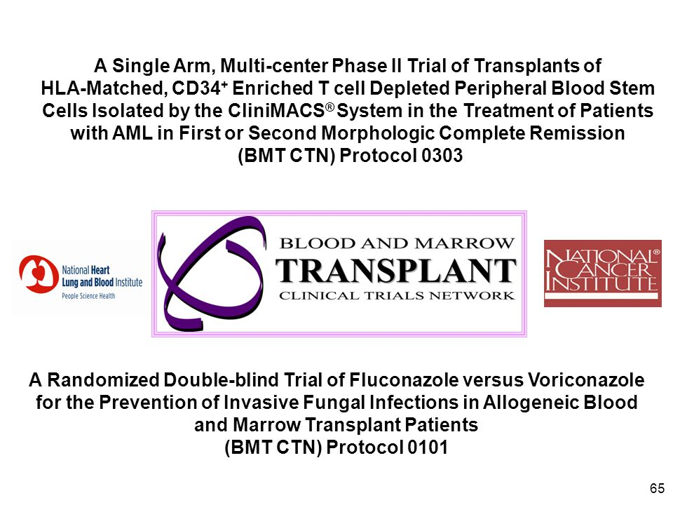 A Single Arm, Multi-center Phase II Trial of Transplants of HLA-Matched, CD34+ Enriched T cell Depleted Peripheral Blood Stem Cells Isolated by the CliniMACS® System in the Treatment of Patients with AML in First or Second Morphologic Complete Remission
