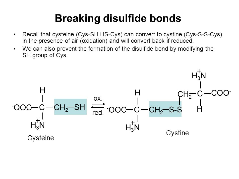 Breaking disulfide bonds