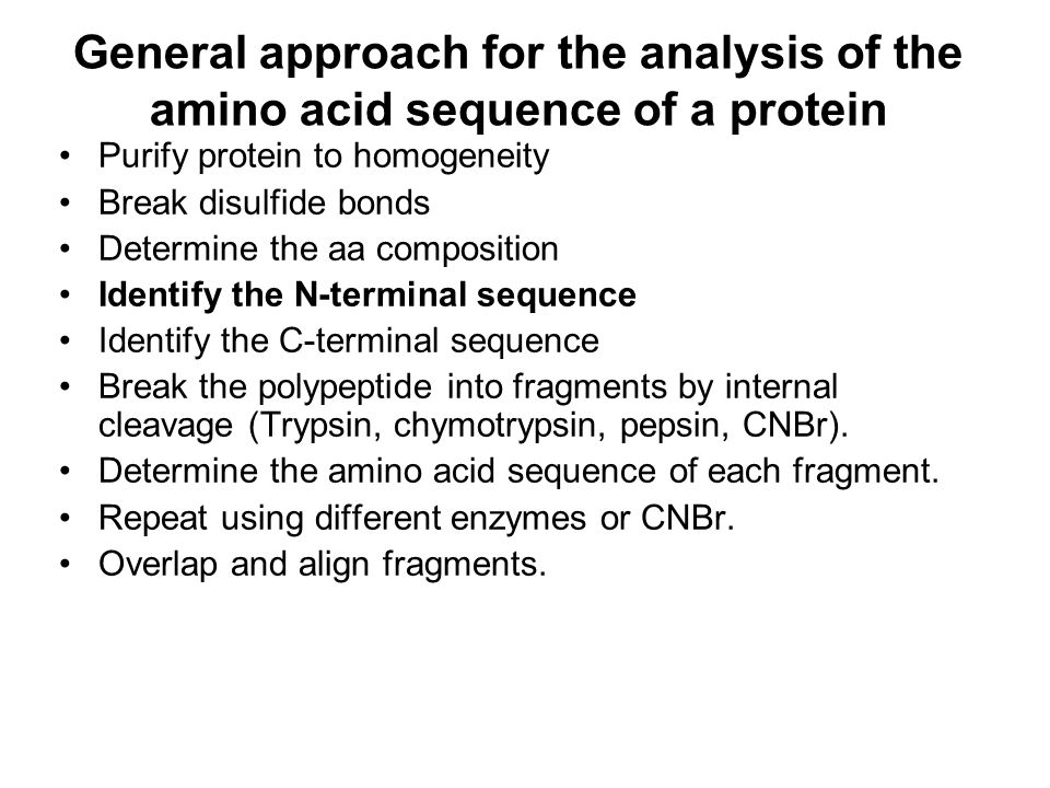General approach for the analysis of the amino acid sequence of a protein