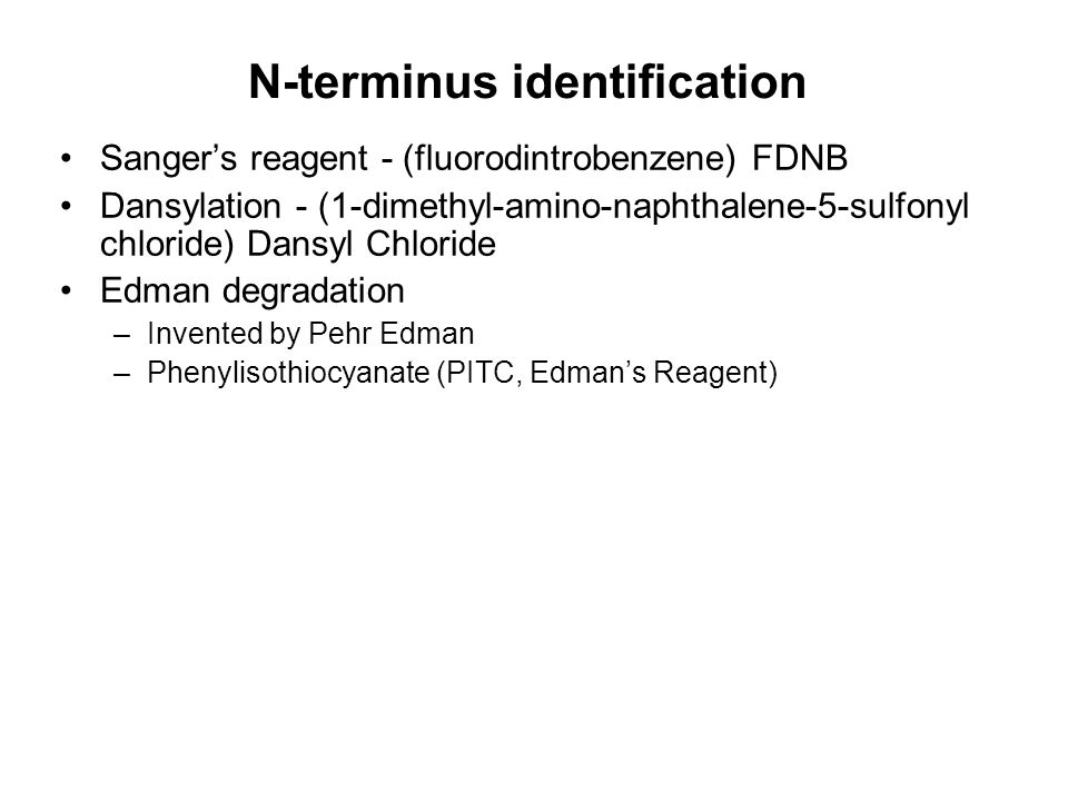 N-terminus identification