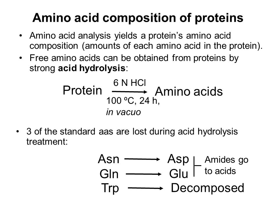 Amino acid composition of proteins