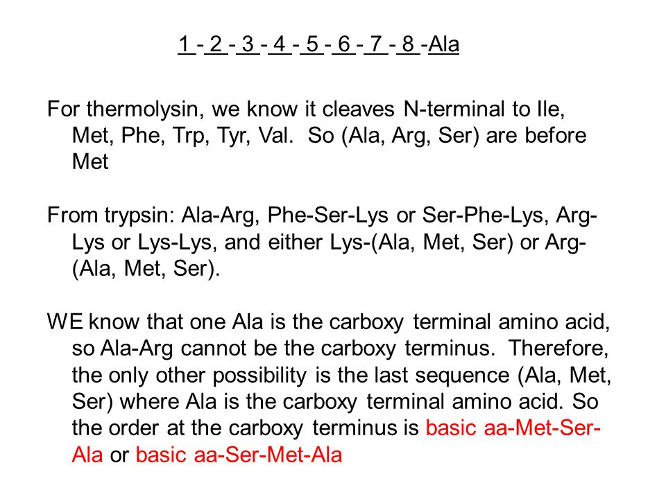 1 - 2 - 3 - 4 - 5 - 6 - 7 - 8 -Ala For thermolysin, we know it cleaves N-terminal to Ile, Met, Phe, Trp, Tyr, Val. So (Ala, Arg, Ser) are before Met.