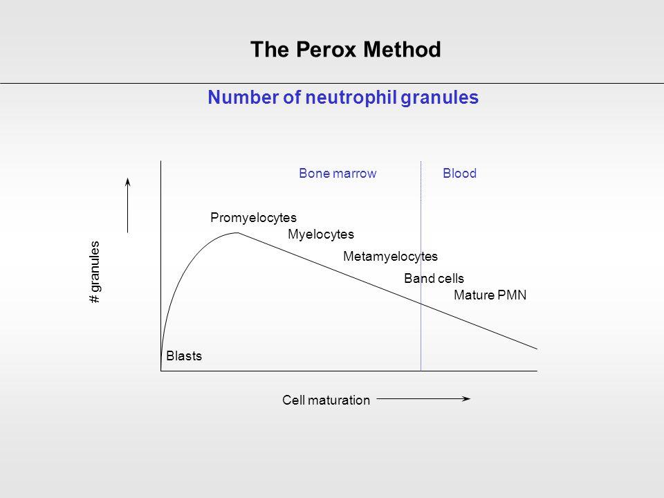 Number of neutrophil granules