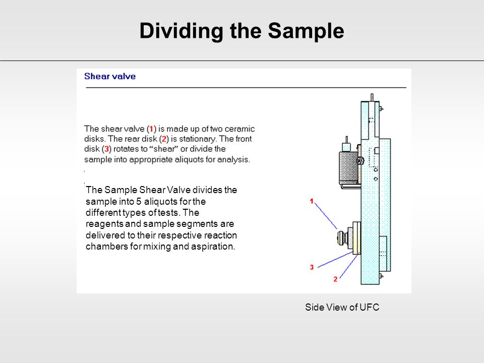 Dividing the Sample