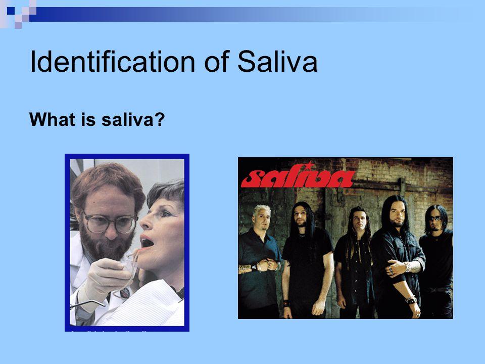 Identification of Saliva