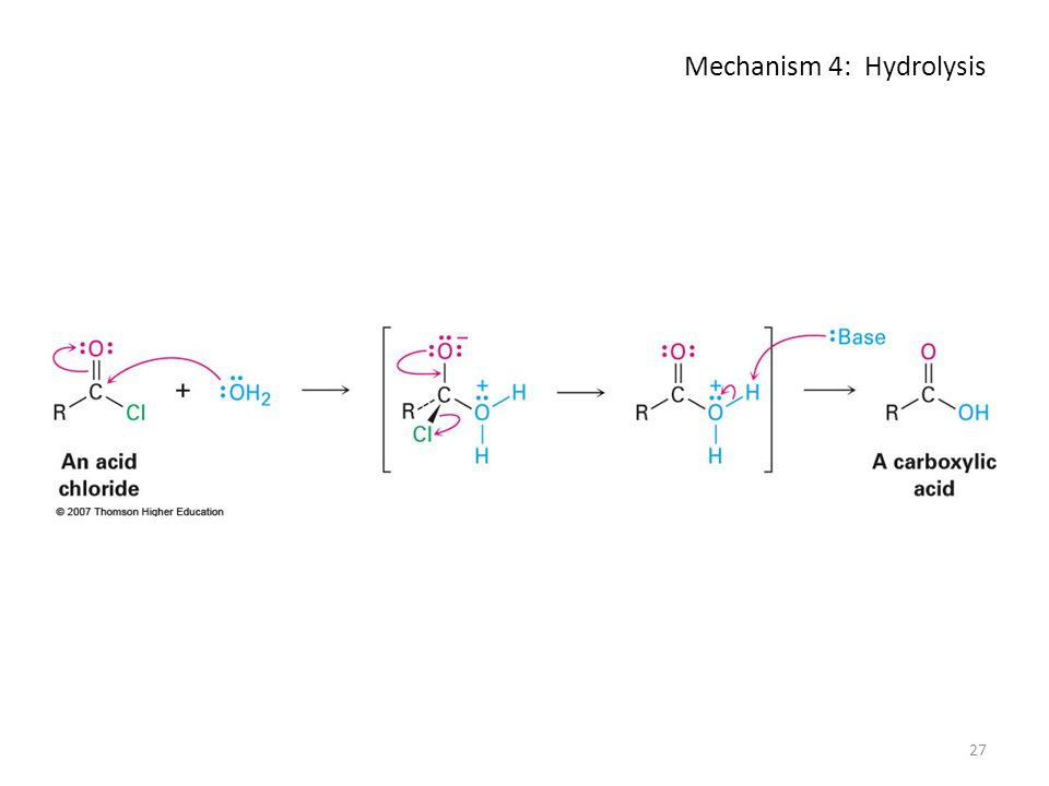 Mechanism 4: Hydrolysis