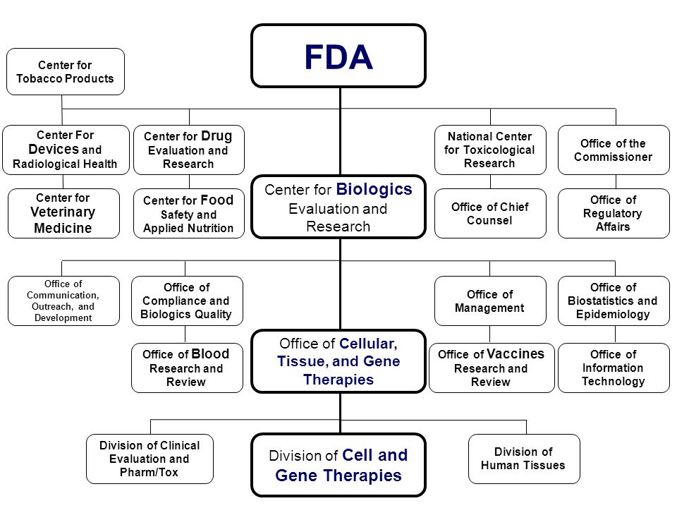 FDA Center for Biologics Evaluation and Research