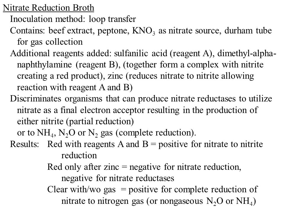 Nitrate Reduction Broth