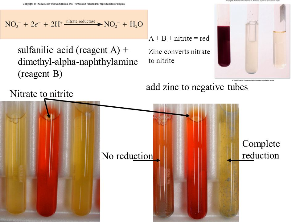 sulfanilic acid (reagent A) + dimethyl-alpha-naphthylamine (reagent B)