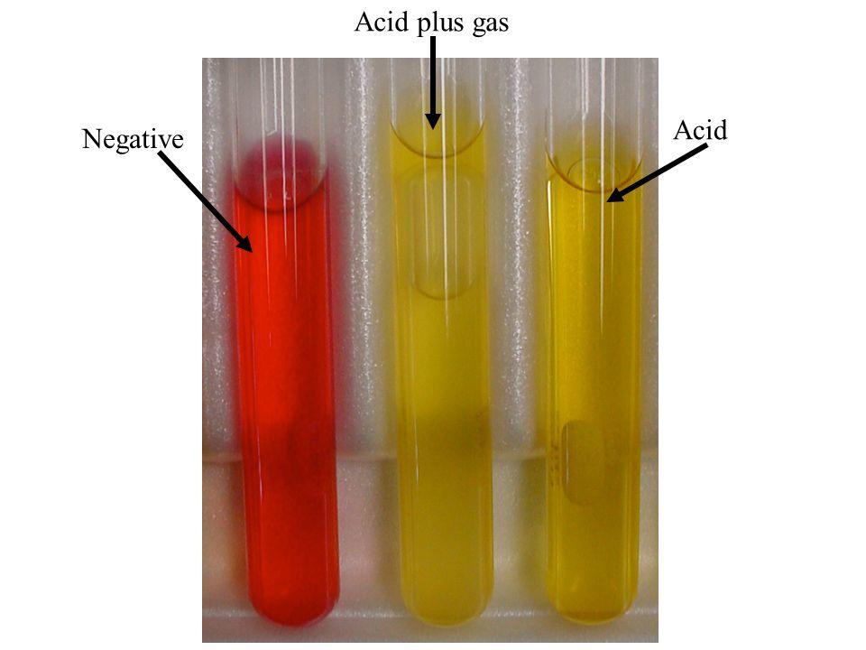 Acid plus gas Acid Negative