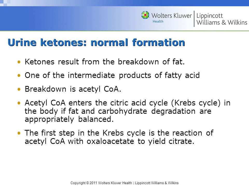 Urine ketones: normal formation