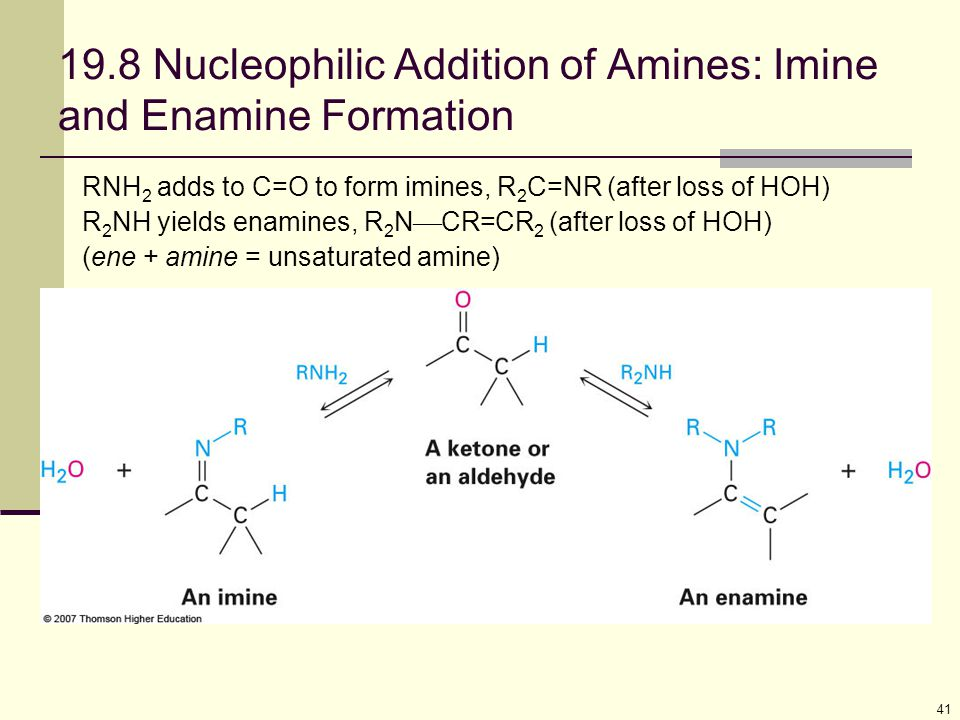 19.8 Nucleophilic Addition of Amines: Imine and Enamine Formation