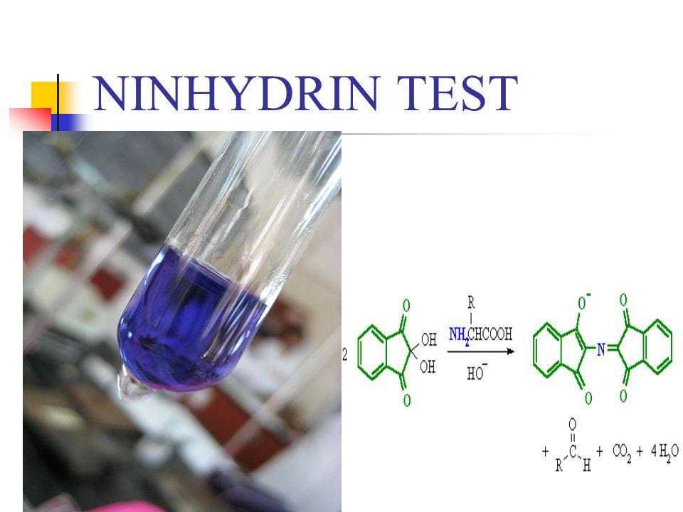 NINHYDRIN TEST
