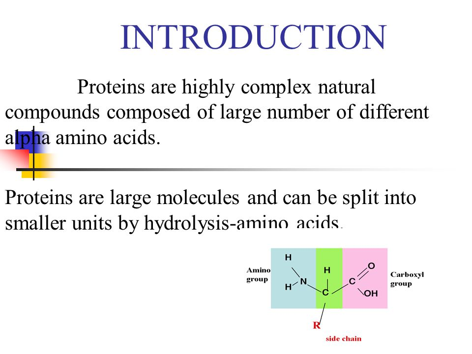 INTRODUCTION Proteins are highly complex natural compounds composed of large number of different alpha amino acids.