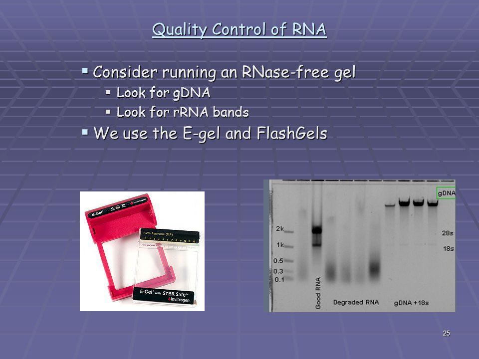 Consider running an RNase-free gel