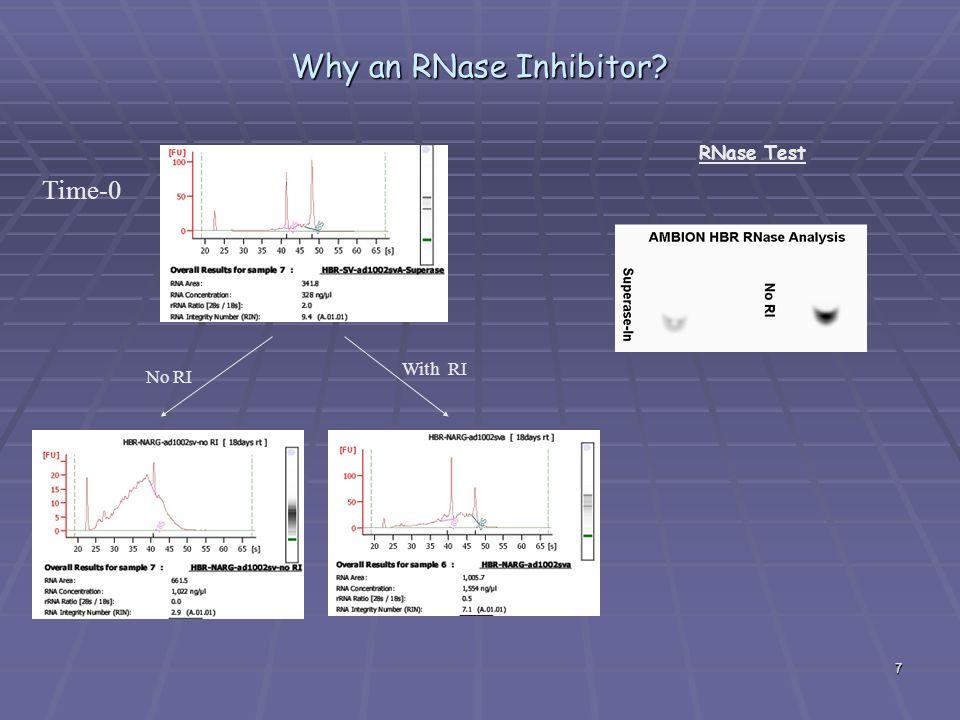 Why an RNase Inhibitor RNase Test Time-0 With RI No RI