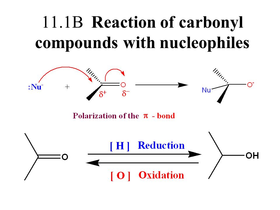 11.1B Reaction of carbonyl compounds with nucleophiles