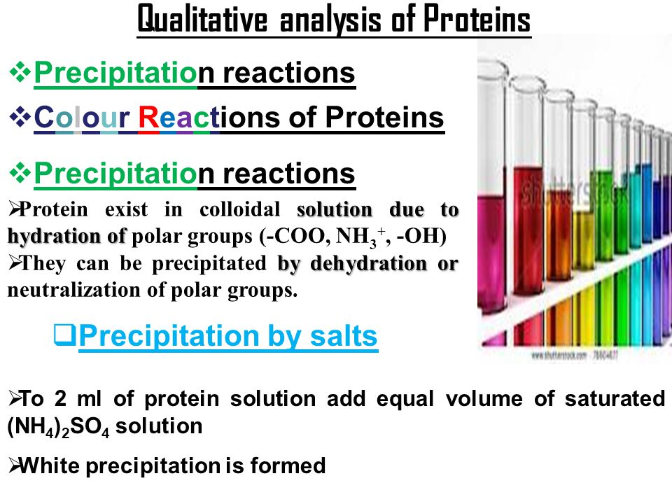 Qualitative analysis of Proteins
